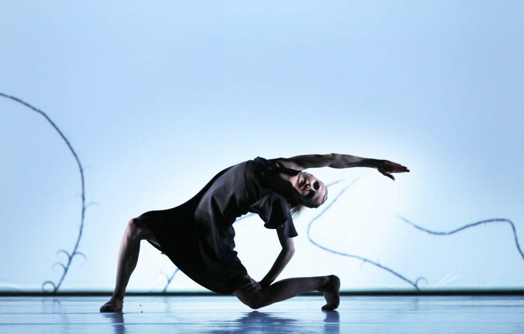 Introdans danst 'GEK GEZICHT'premiere Arnhem, 7 maart 2020foto: Hans Geritsen